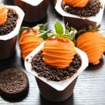 carrot-dirt-cups-12