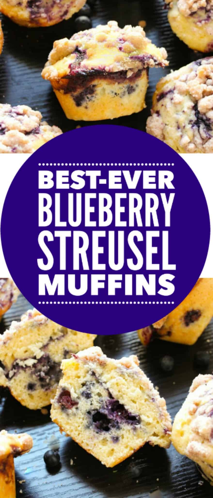 blueberry-muffins-barkery